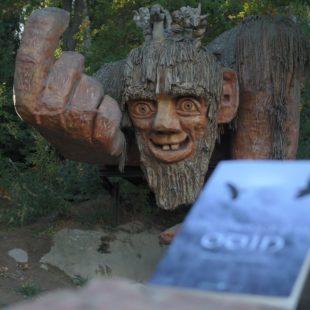 Book Tour per La Memoria di Odino