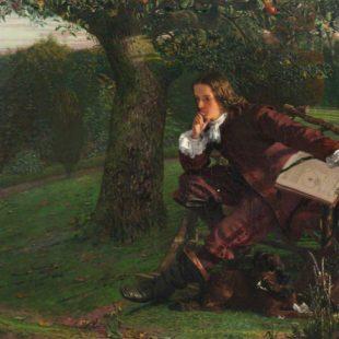Alberi famosi in letteratura